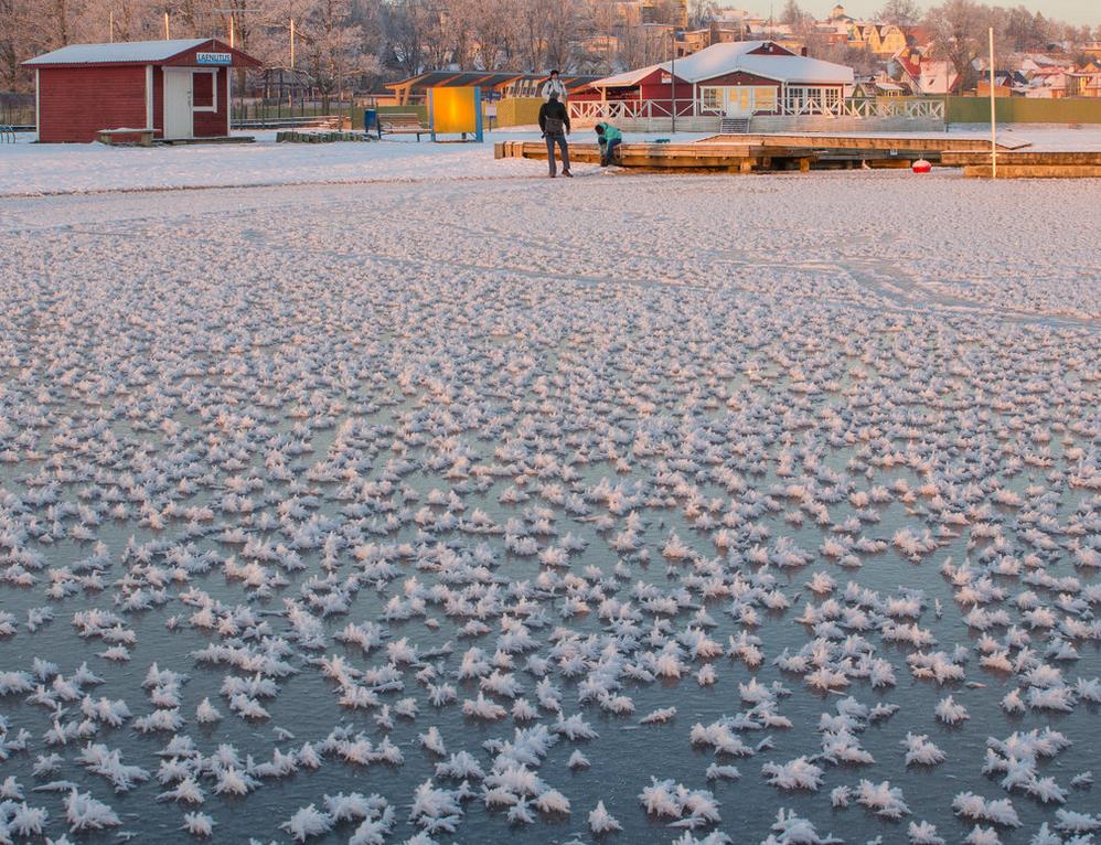 eesti_cold