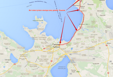 Примерные границы Таллинна и окрестностей.